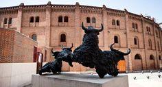 La mitad de los abonos de #Valladolid ya están vendidos #TienesQueVenir #FeriaTaurina #Feria #Toros #ValladolidEsTaurina #Arte #Cultura #TurismoTaurino