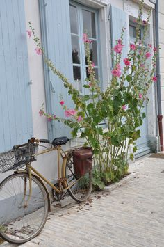 stroll the hollyhock lined lanes of the Ile de Re and ride everywhere by bike Hollyhock, Over The Rainbow, Beach Cottages, France Travel, Pretty Pictures, Garden Inspiration, Beautiful Images, Planting Flowers, Decoration