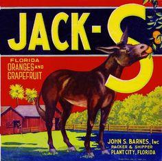 Plant City Florida Jack-S Donkey Mule Orange Citrus Fruit Crate Label Art Print in Labels | eBay