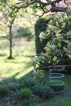 White Garden with Apple Trees www.lieblingsidee.blogspot.com