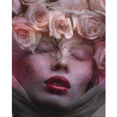 Art numérique de photomontage rose Goddess imprimer par VoogsArt