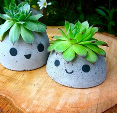 Dollar Store Crafts - Cute Concrete Planters - Best Cheap DIY Dollar Store Craft Ideas for Kids, Tee Easy Crafts, Diy And Crafts, Teen Crafts, Decor Crafts, Adult Crafts, Paper Crafts, Diy Concrete Planters, Succulent Planters, Succulents
