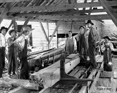 Worked at the Kimpfer Saw Mill, in Hollypaw, Fl.