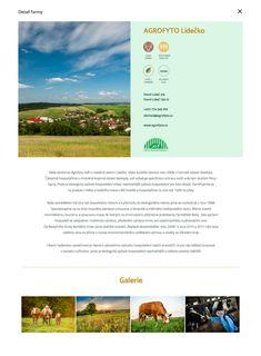 Desktop Screenshot, Design