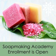 Register for 14 Week Online Soapmaking Academy - Winter Term by November 30, 2015 and SAVE $100 on Pay in Full Option