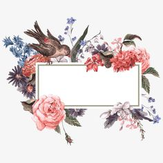 Watercolor Flowers And Border Frame PNG - flower frame, flowers and bird, flowers border, frame, watercolor border Flower Background Wallpaper, Flower Backgrounds, Wallpaper Backgrounds, Wallpapers, Vogel Clipart, Bird Clipart, Watercolor Border, Watercolor Flowers, Affinity Photo