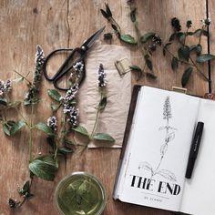 Midori Traveler's notebook by nicnillas ink #journalingtip #travelersnotebook #journal #artjournal #journaling #illustration #drawing #sketchbook #sketch