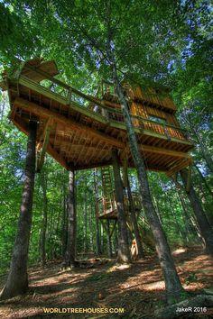 world-treehouses-asheville