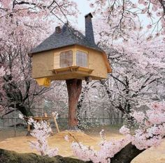 Vivere in una casa di #lusso sull'albero.   #curiosità #mercatoimmobiliare #CaseDiLusso