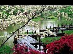 ARTE Y JARDINERÍA DISEÑO DE JARDINES: Jardines orientales