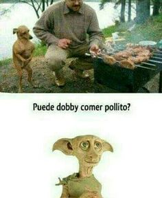 jajajajajaja un clásico 7u7 xddxdcdjajaja#humor#risa#pollito#dovi#perrito#unclasico#sepasopo