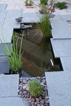 Asiatique Jardin by Landscape And Architectural Design Products PL