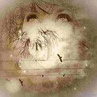 Цифровое искусство Мелиссы Д. Джонстон