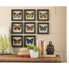 Featuring a series of detailed butterfly illustrations framed in rustic fir wood, this set of eight assorted prints creates an effortlessly captivating ho...
