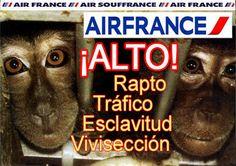MUNDO ANIMAL : Directivos de Air France: Alto al transporte de an...