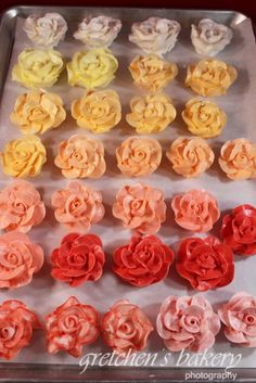 How to make 8 + different colors of Buttercream roses with 1 pastry bag and 1 bowl!  EASY CLEANUP!