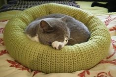 This kitty bed is crocheted while holding two strands of yarn together at the same time so it's extra thick and plushy. The finished product measures wide and deep.Ravelry: Kitty Bed pattern by Ashley DunhamThis Crochet Cat Bed project that we will Gato Crochet, Crochet Cat Toys, Crochet Animals, Free Crochet, Ravelry Crochet, Animal Room, Pet Beds, Dog Bed, Cat Couch