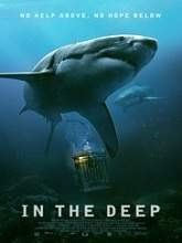 In the Deep (2016)DVDrip English