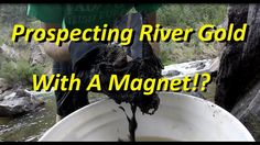 Prospecting River Gold With A Magnet! Minerals And Gemstones, Rocks And Minerals, Gold Sluice, Gold Deposit, Magnet Fishing, Panning For Gold, Gold River, Gold Prospecting, Bushcraft Camping