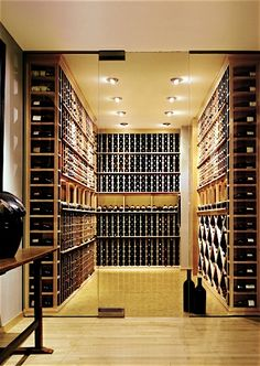 wine - where the wall is entirely glass. In your case the wine rack would dictate the depth and add a ladder to this profile to get those bottles up high.