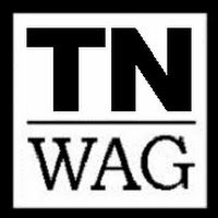 Tennessee Writers and Authors Group