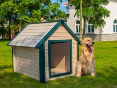 New Age Pet ecoFLEX Bunk Style Dog House ** See this great product. (This is an affiliate link) Extra Large Dog House, Small Dog House, Build A Dog House, Dog House Plans, Large Dogs, Small Dogs, House Dog, Heated Dog House, Insulated Dog House