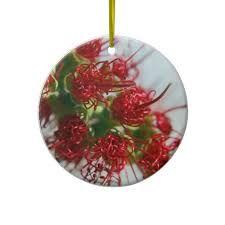 images australian christmas ornaments - Google Search   Christmas ...