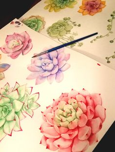 succulentes watercolor. Clipart SWEETDESIGNFACTORY by Emeline Pons