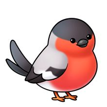 Bird - bullfinch-- Lots of clip art on this site