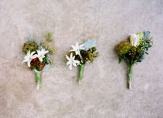 Classic Fall Boutonnieres   photography by http://www.aliharperphotography.com/