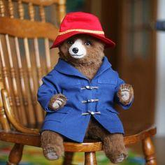 Teddy Bear Traveler By Ekaterina Filippova - Bear Pile