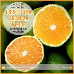 Esiste un'arancia verde originaria del Vietnam