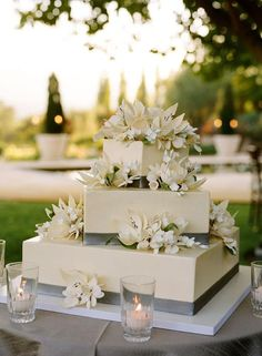 To see more chic wedding cake ideas: http://www.modwedding.com/2014/11/27/make-statement-chic-wedding-cakes/ #wedding #weddings #wedding_cake Photographer: Meg Smith Photography