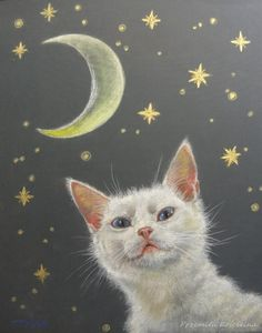 Pastel drawing White cat portrait by Canis Art Studio. Pet portraits on request. #cat  #moon #night #petportrait #painting #pastel #drawing #fineart #request #art #canisart #canisartstudio