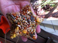 Bird Seed Feeder...great pictorial tutorial