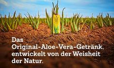 Entwickelt von der Weisheit der Natur!Erlebe und genieße die ganze Kraft der Aloe Vera.Enthält 99,7 % reines Aloe-Vera-Gel. Aloe Vera Gel, Gel Aloe, Forever Aloe, Berry, Clean9, Forever Living Products, Asparagus, Anti Aging, Peach