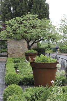 Attraktiv Judges House | Garden Design Oxfordshire | Hendy Curzon Gardens