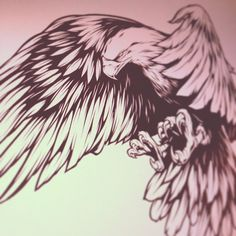 #eagle #illustration #art #absorb81 #caliberblack #ink