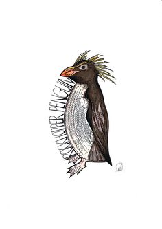A striking colourful print of a Rockhopper penguin, made up of intricate patterns creating a fun piece of art work. This is a print of an Penguin Tattoo, Penguin Logo, Penguin Art, Rockhopper Penguin, Penguin Illustration, Beautiful Birds, Penguins, How To Draw Hands, Art Pieces