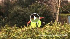 Funny Prank Videos Zombie