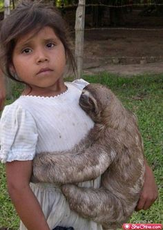 """""""When will the sloth leave me alone?"""""""