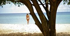 Lifestyle - Montpelier Plantation and Beach