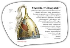 Znalezione obrazy dla zapytania szyszak wielkopolski