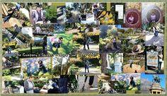 Company gardens CT 2015!