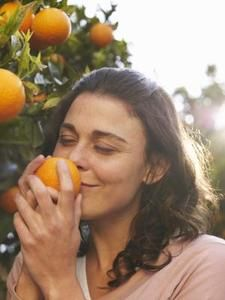 how to grow tropical fruit in a temperate climate