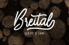 Breital ~ Script Fonts on Creative Market