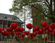 Watertoren van Oldenzaal, links een stukje van het ziekenhuis. foto Berlinda