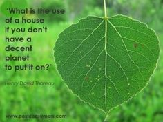 Green quotes.