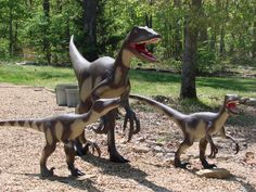 Dinosaur Family out for a stroll in the Ozark Mountains