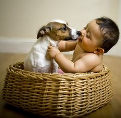baby and dog